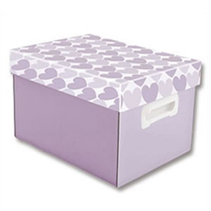 CAIXAS ORGANIZADORAS DECORADAS THE BEST BOX P 335X255X180 LL